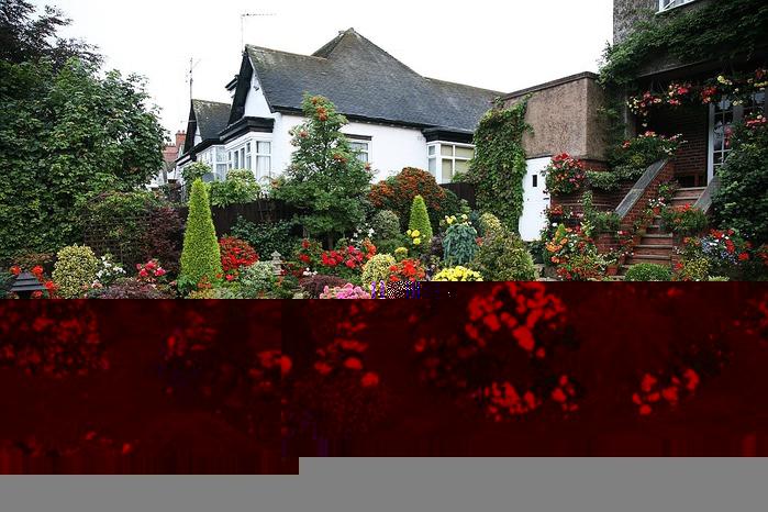 Дизайн садового участка в картинках